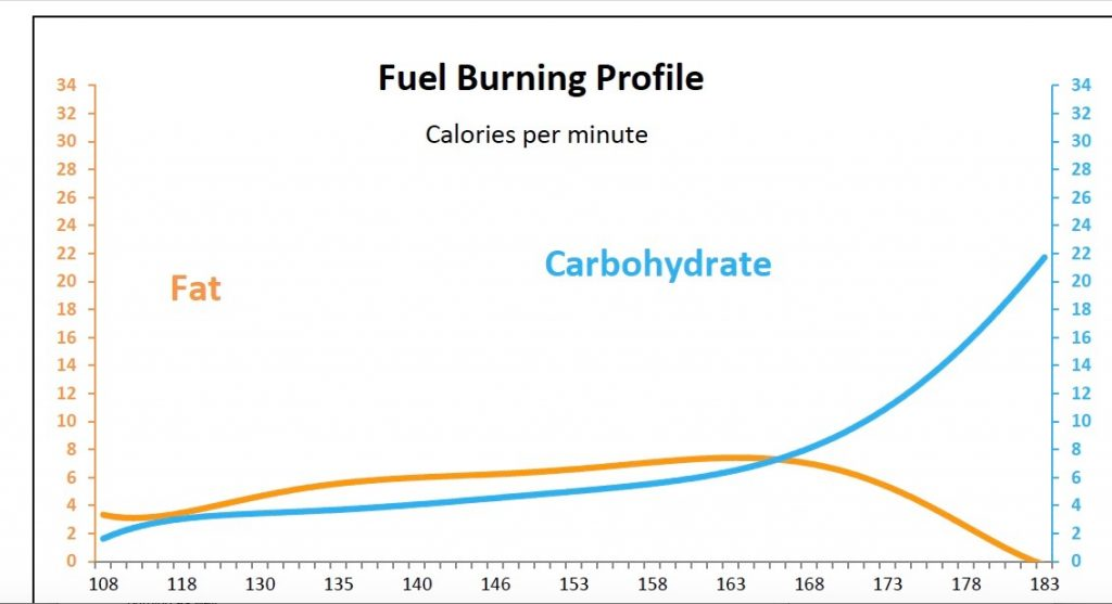 Fat burning profile ?